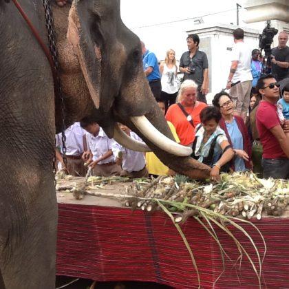 פסטיבלים בתאילנד – מי אינו אוהב פסטיבל ?
